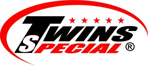 Twins best boxing brand