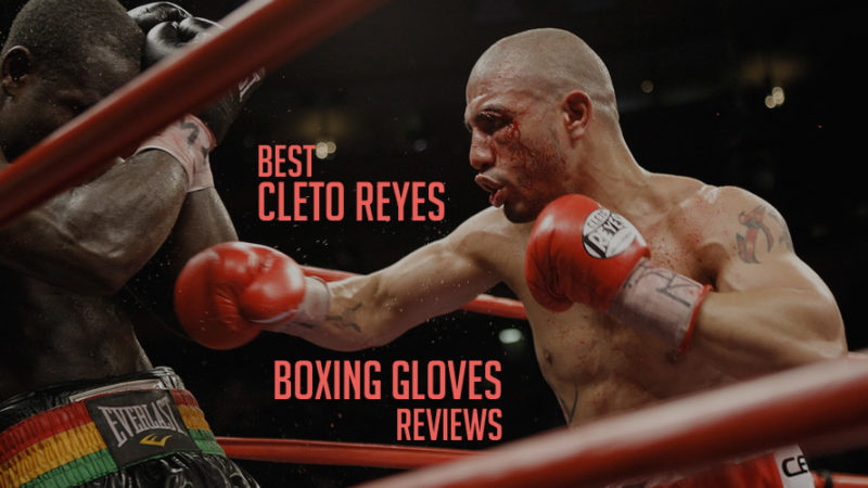 Cleto Reyes Boxing Gloves - All Models Review 2019