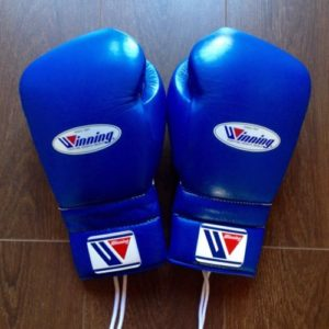 winning bes boxing gloves