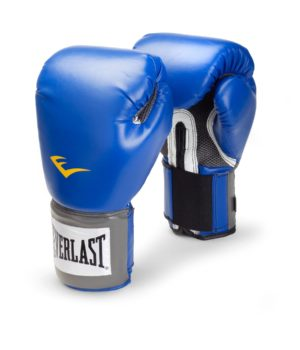 Everlast 8 Oz Boxing Glove