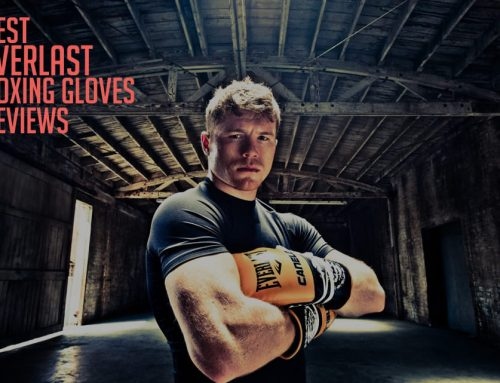 Everlast Boxing Gloves Reviews 2019